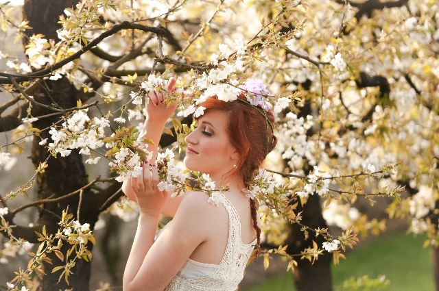 【夢占い】桜が満開!など全8パターンの吉凶の暗示!